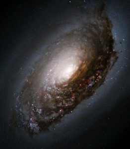 black eye galaxy,m64,ngc 4826,evil eye,sleeping beauty,spiral galaxy