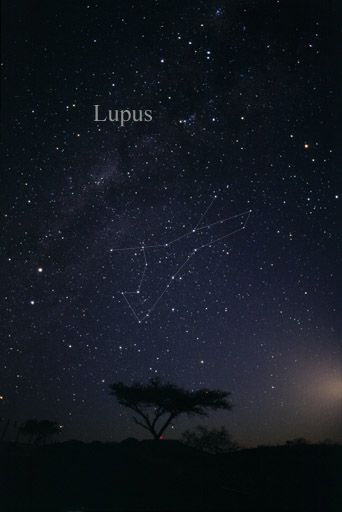 Lupus constellation, image: Till Credner