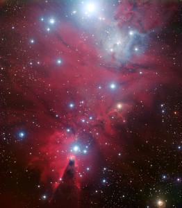 christmas tree cluster,cone nebula