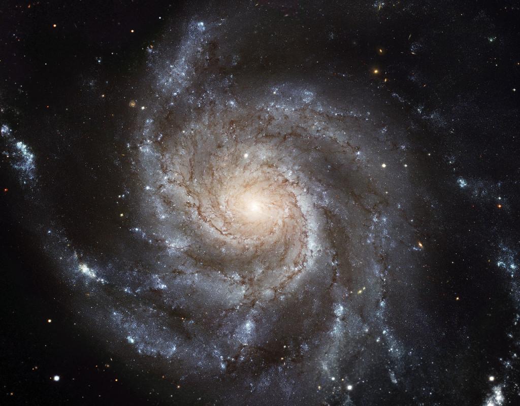 pinwheel galaxy,grand design spiral galaxy,m101