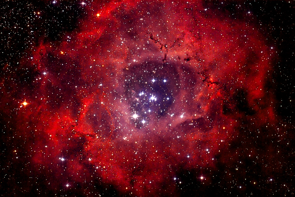 Picture of the Star Cluster NGC 2244 and the surrounding Rosette Nebula Telescope: 800mm F4 GSO Newton Imager: Modified Canon EOS 550D (IR Block removed) 3 RGB Frames stacked with 800 secs each Postprocessing with PixInsight / Photoshop. Image: Andreas Fink