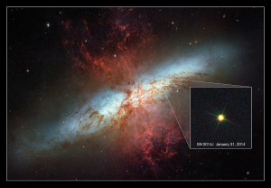 supernova,cigar galaxy,m82