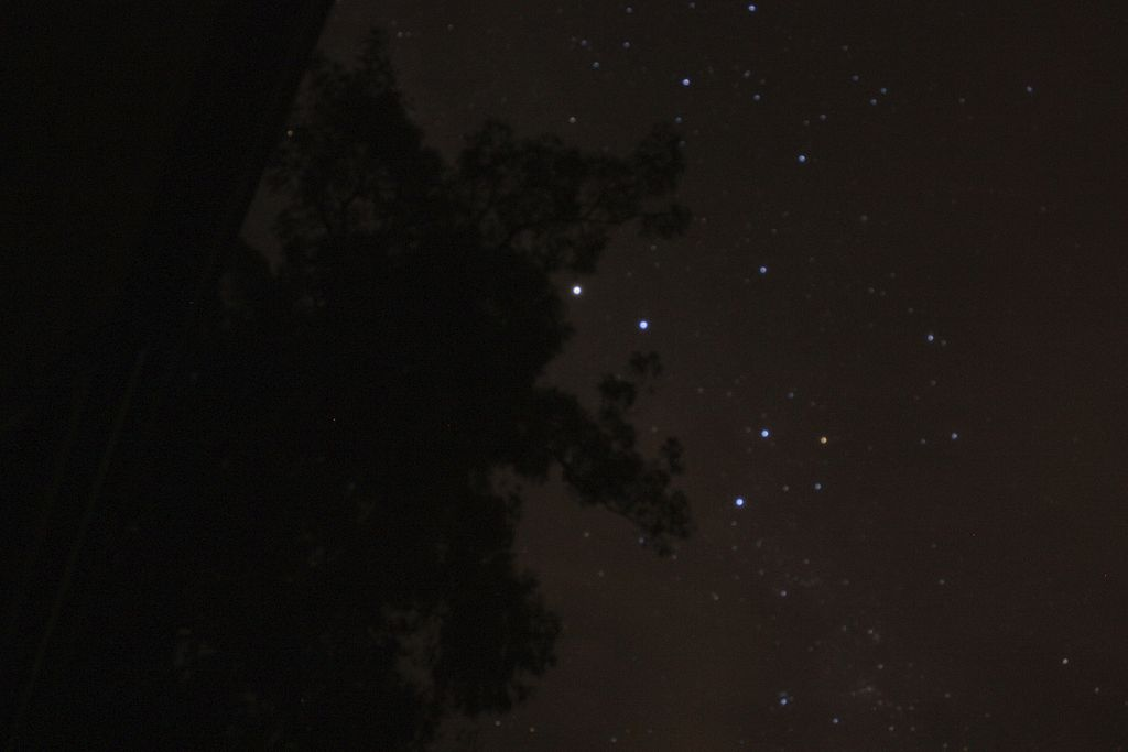 Southern Cross (also known as Crux) photographed with a 30 second exposure. Other stars are partly obscured by a tree in the foreground. Image: Flickr