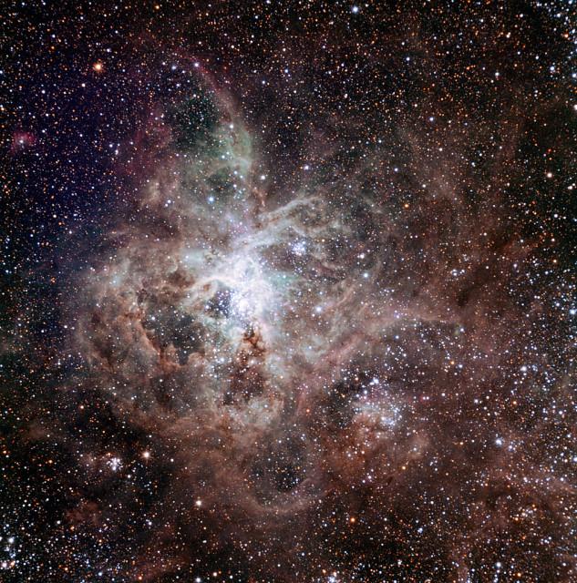 tarantula nebula,starburst nebula
