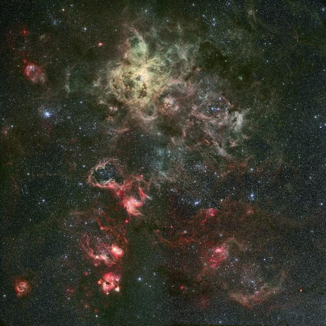 tarantula nebula,ngc 2070