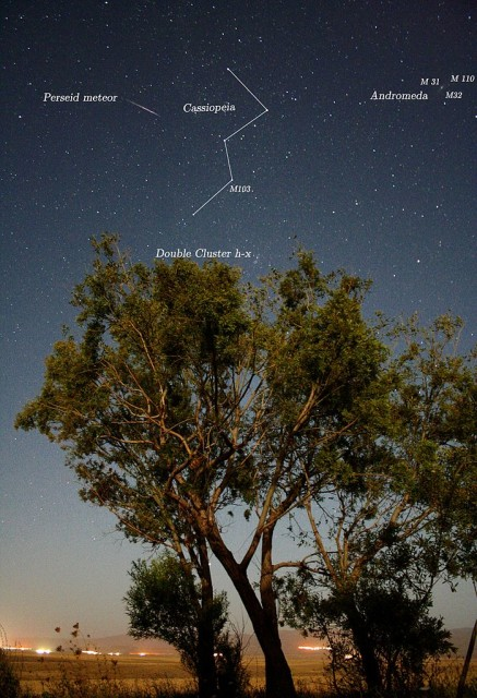 perseids,find perseus in the sky