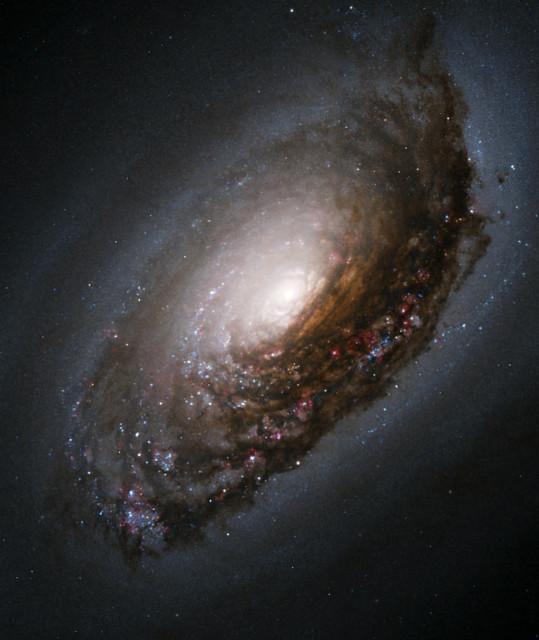 messier 64,m64,spiral galaxy