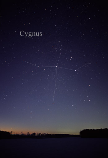 northern cross,northern cross constellation