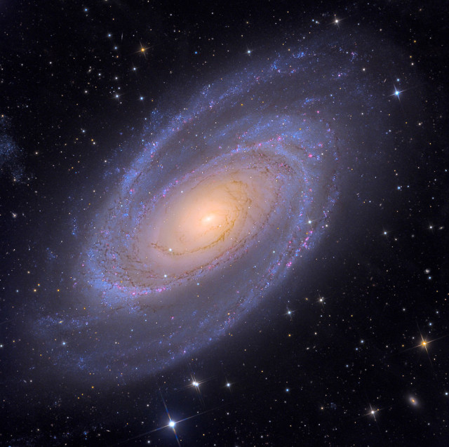 messier 81,m81,grand design spiral galaxy