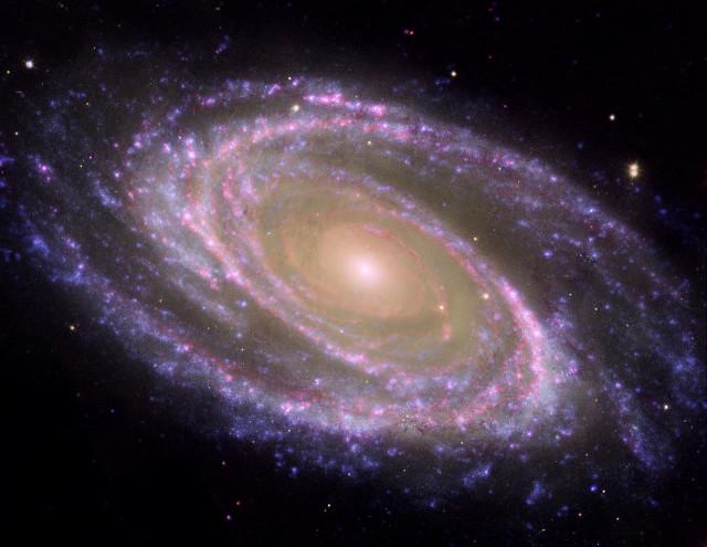 m81,bode's galaxy,starburst galaxy