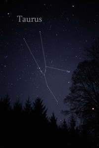 taurus star cluster