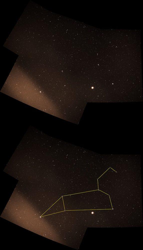 Regulus Alpha Leonis Constellation Guide