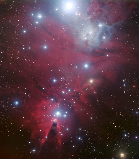 fox fur nebula,christmas tree cluster,cone nebula