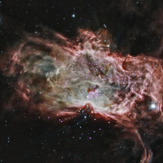 flame nebula cluster,ngc 2024