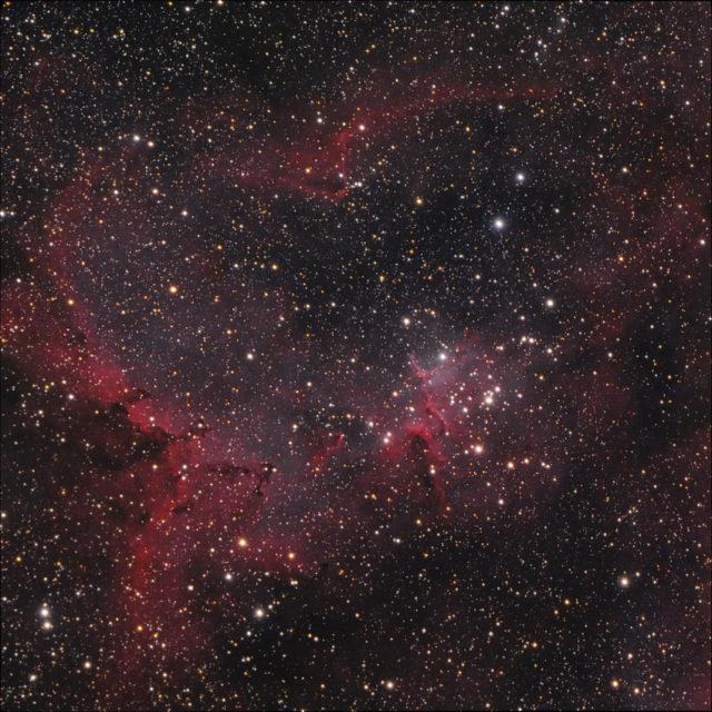 heart nebula cluster,open cluster
