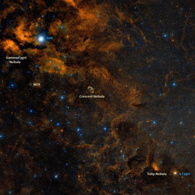 Gamma Cygni Nebula, Crescent Nebula, Tulip Nebula,messier 29