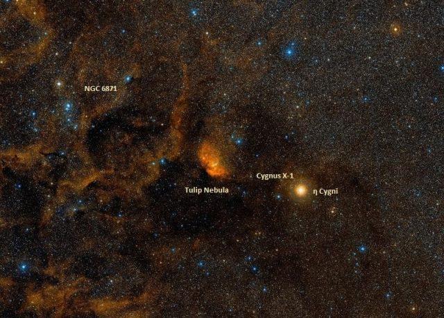NGC 6871, Tulip Nebula, Cygnus X-1