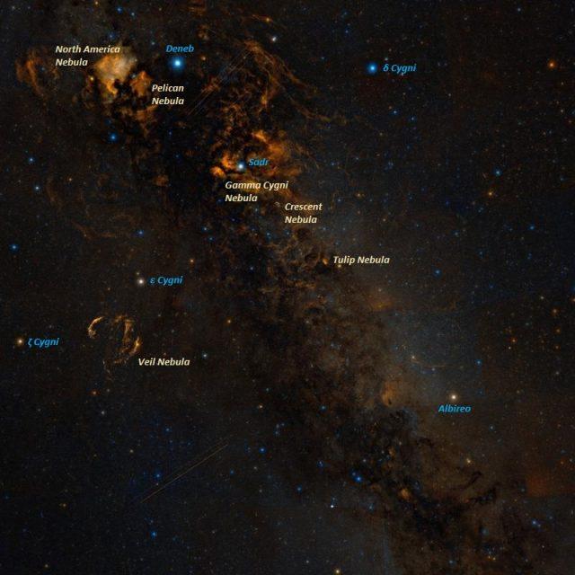 north america nebula,pelican nebula,gamma cygni nebula,crescent nebula,tulip nebula,veil nebula